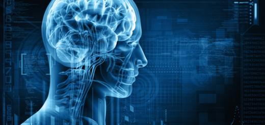 Тайна человеческого мозга
